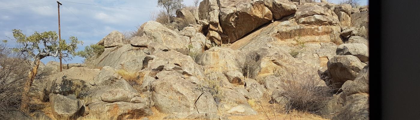 """Namibian toinen UNESCO-perintökohde """"Kivettynyt metsä"""""""