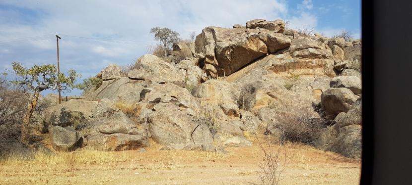 Namibian-kiertomatka: kivettynyt metsä