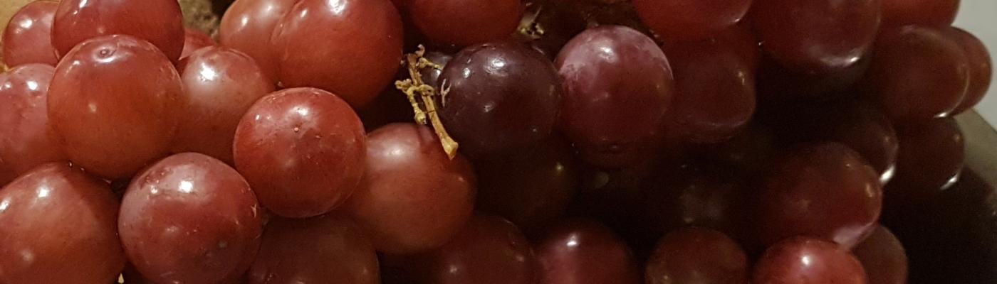 Pienet tummat viinirypäleet ovat ihanan makeita, ikään kuin luonnon hedelmäsokerikarkkeja..